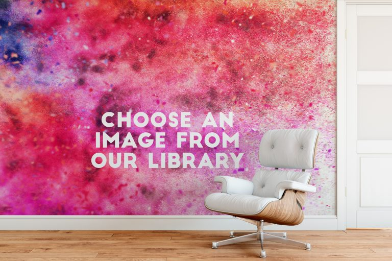 Choose from our galleries wall mural