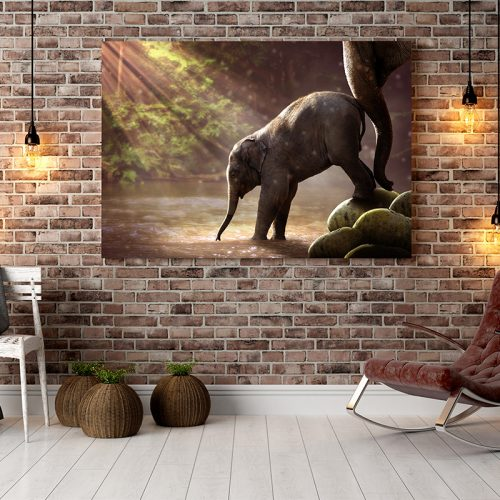 Exclusive Canvases